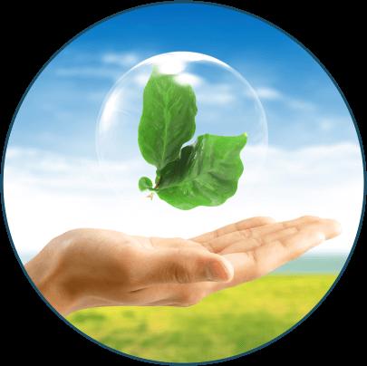 environmental round